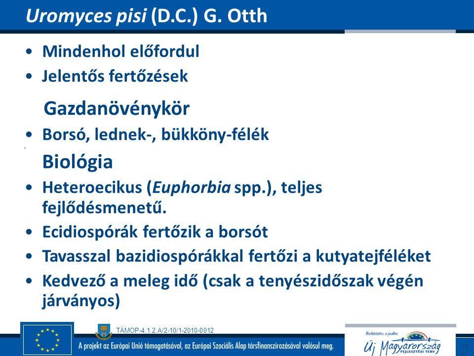 Uromyces pisi (D.C.) G. Otth