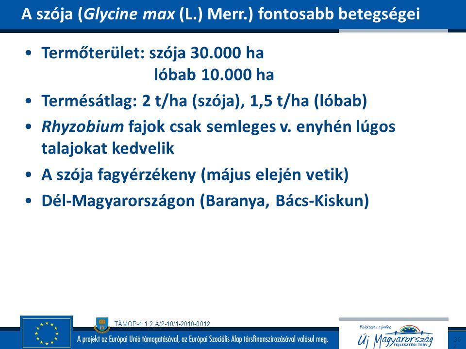 A szója (Glycine max (L.) Merr.) fontosabb betegségei