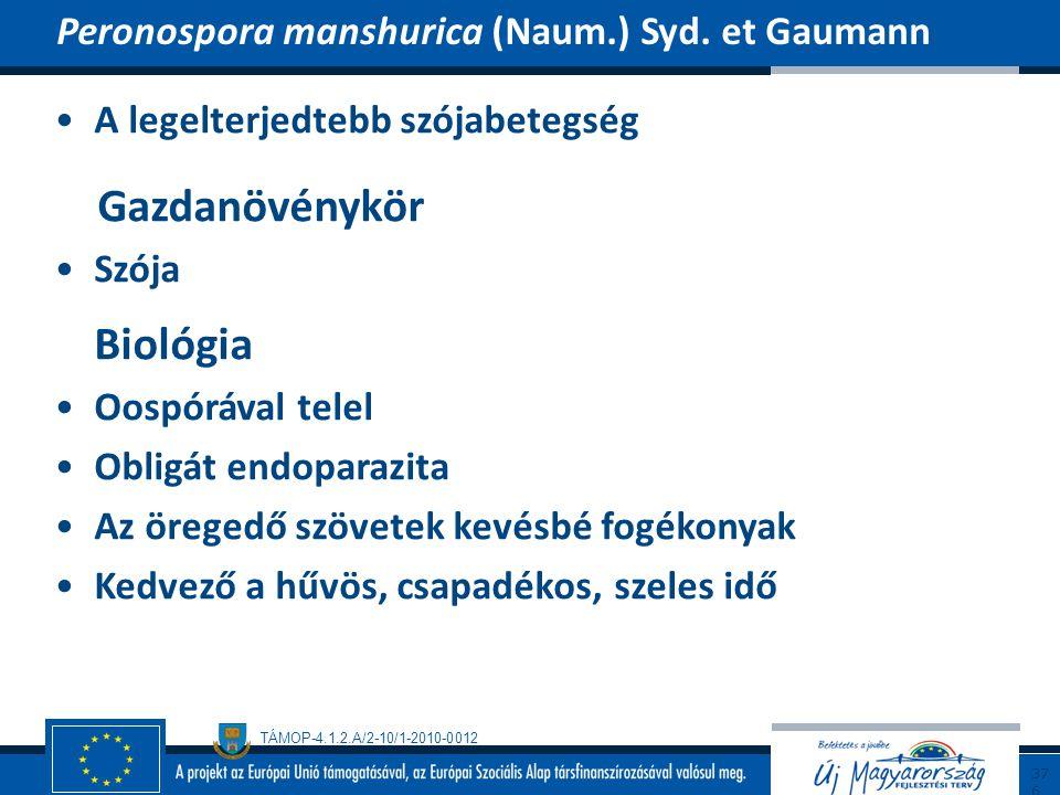 Gazdanövénykör Peronospora manshurica (Naum.) Syd. et Gaumann