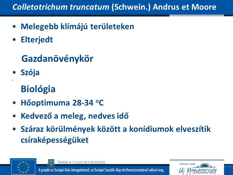 Gazdanövénykör Colletotrichum truncatum (Schwein.) Andrus et Moore