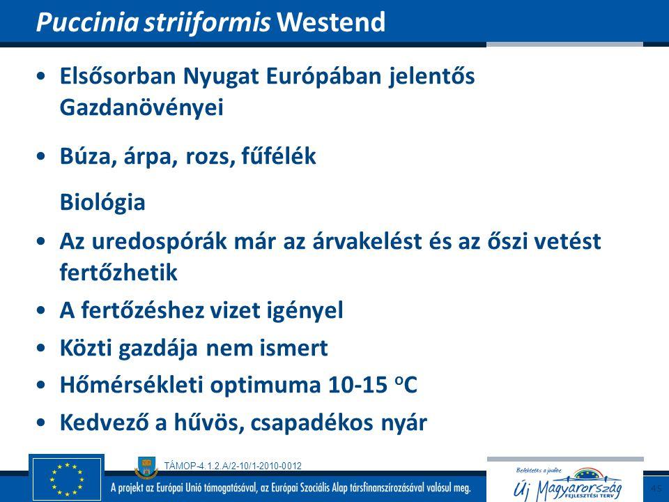 Biológia Puccinia striiformis Westend