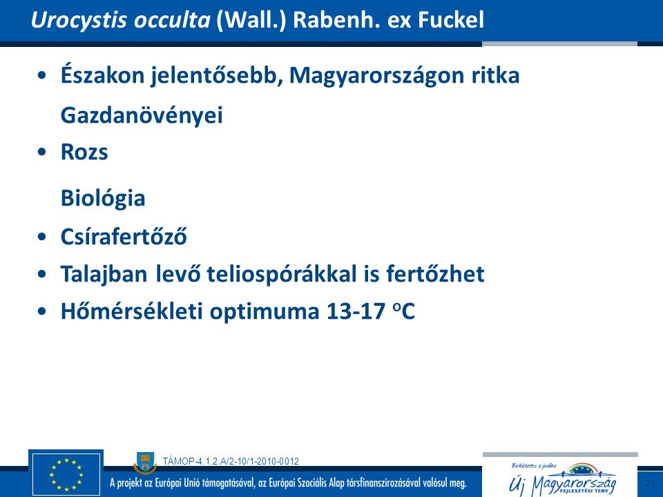 Biológia Urocystis occulta (Wall.) Rabenh. ex Fuckel