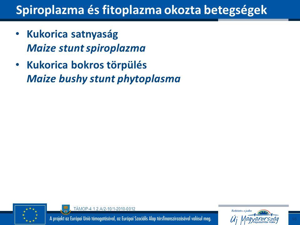 Spiroplazma és fitoplazma okozta betegségek
