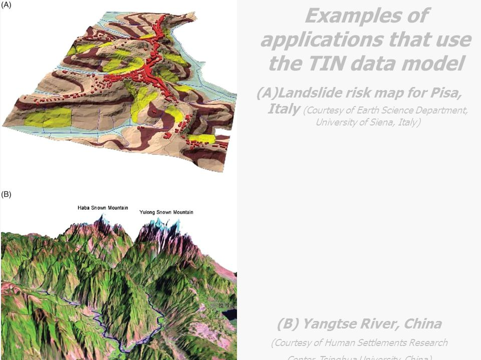 Examples of applications that use the TIN data model