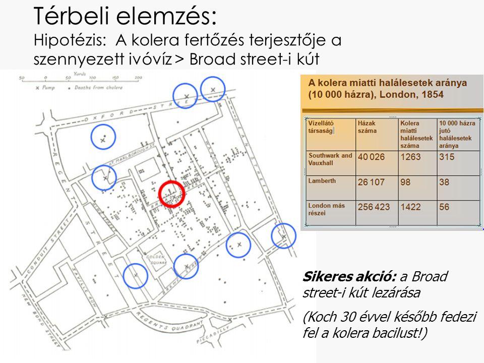 Térbeli elemzés: Hipotézis: A kolera fertőzés terjesztője a szennyezett ivóvíz > Broad street-i kút