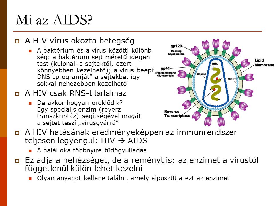 Mi az AIDS A HIV vírus okozta betegség A HIV csak RNS-t tartalmaz