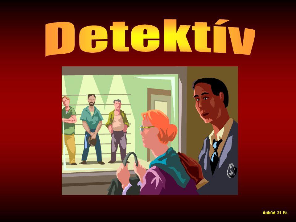 Detektív Attitűd 21 Bt.