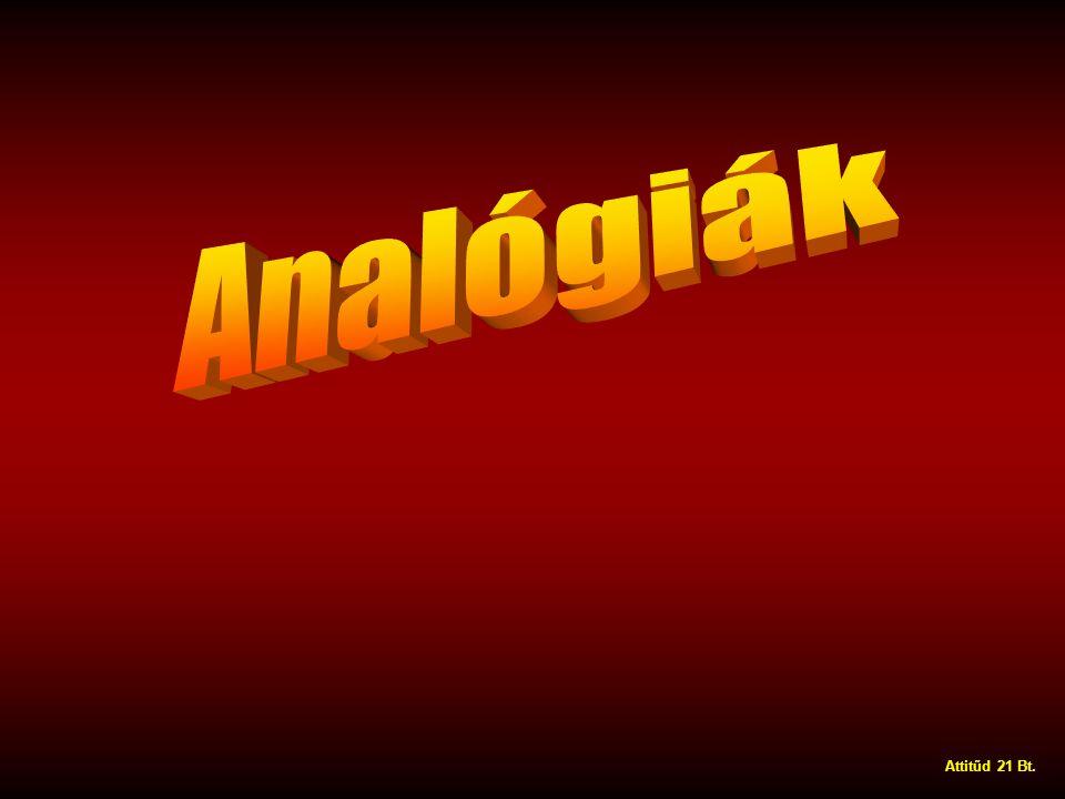 Analógiák Attitűd 21 Bt.