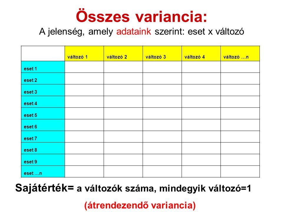 Összes variancia: A jelenség, amely adataink szerint: eset x változó