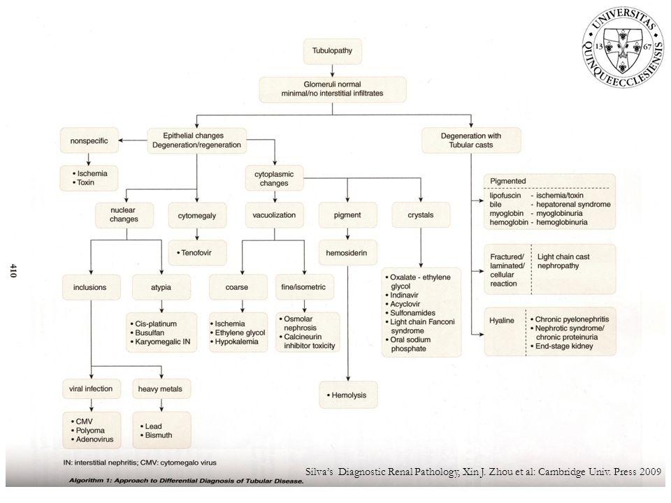 Silva's Diagnostic Renal Pathology, Xin J. Zhou et al: Cambridge Univ