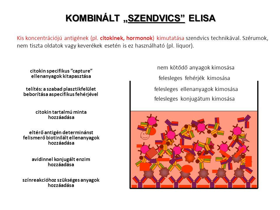 """KOMBINÁLT """"SZENDVICS ELISA"""