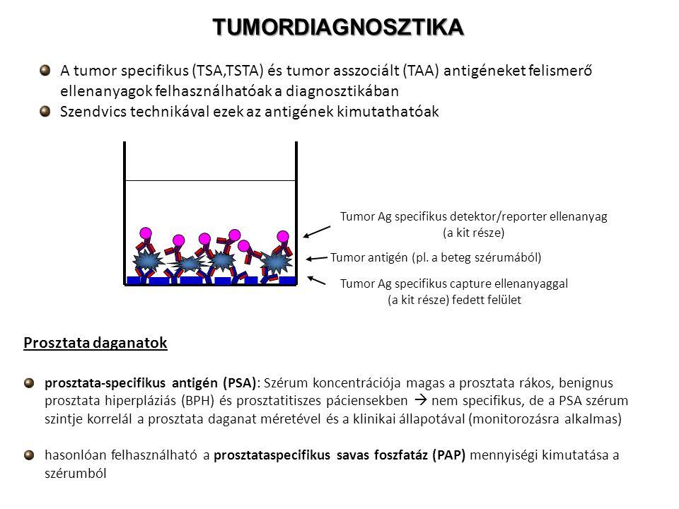 TUMORDIAGNOSZTIKA A tumor specifikus (TSA,TSTA) és tumor asszociált (TAA) antigéneket felismerő ellenanyagok felhasználhatóak a diagnosztikában.