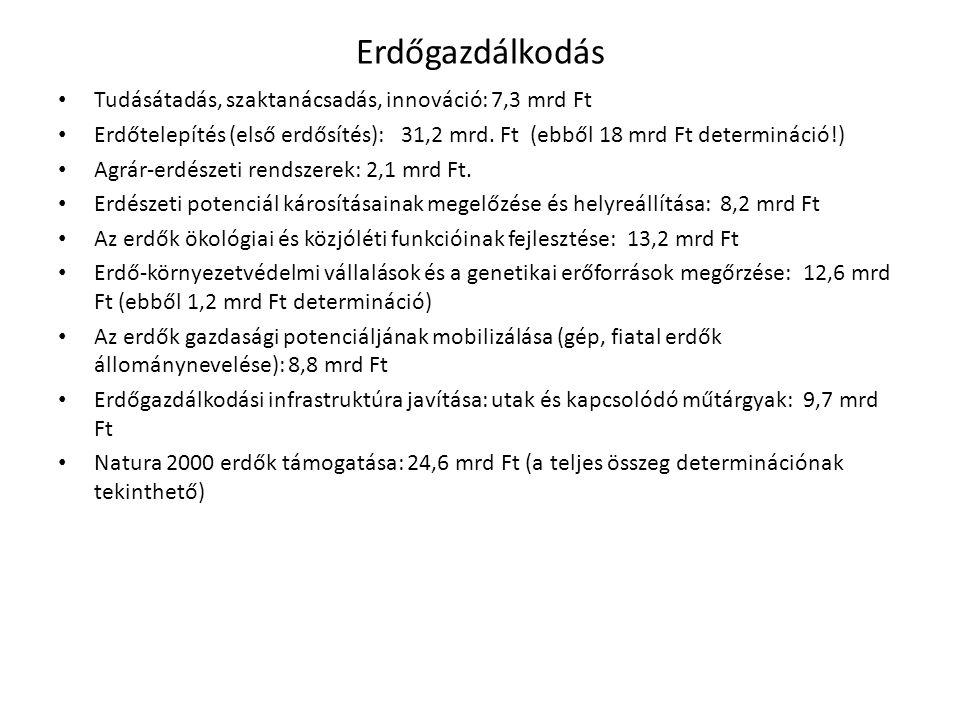 Erdőgazdálkodás Tudásátadás, szaktanácsadás, innováció: 7,3 mrd Ft