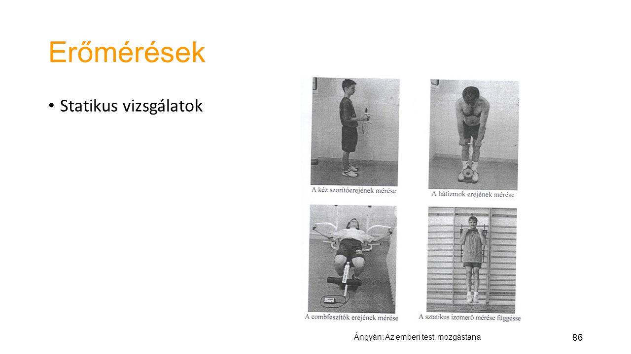 Erőmérések Statikus vizsgálatok Ángyán: Az emberi test mozgástana