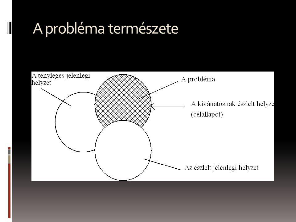 A probléma természete