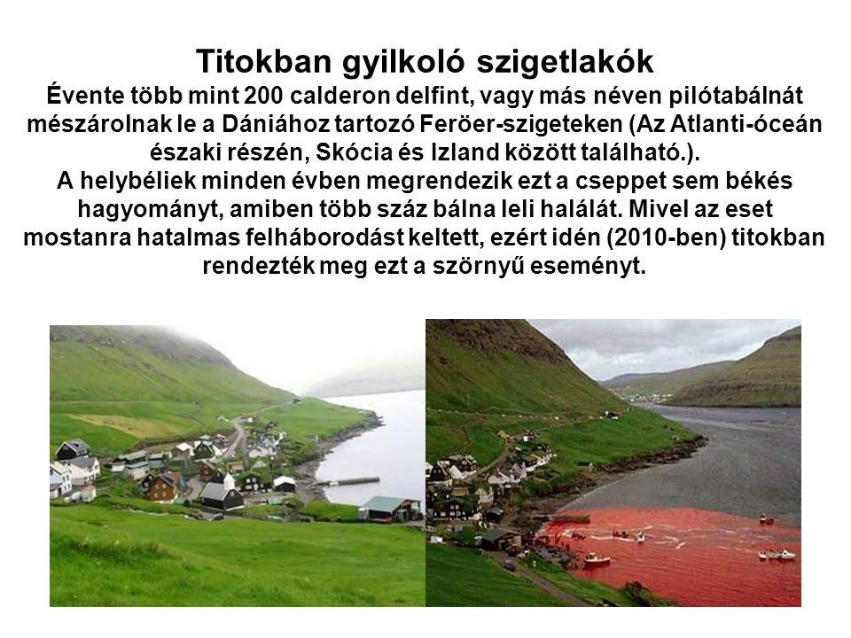 Titokban gyilkoló szigetlakók