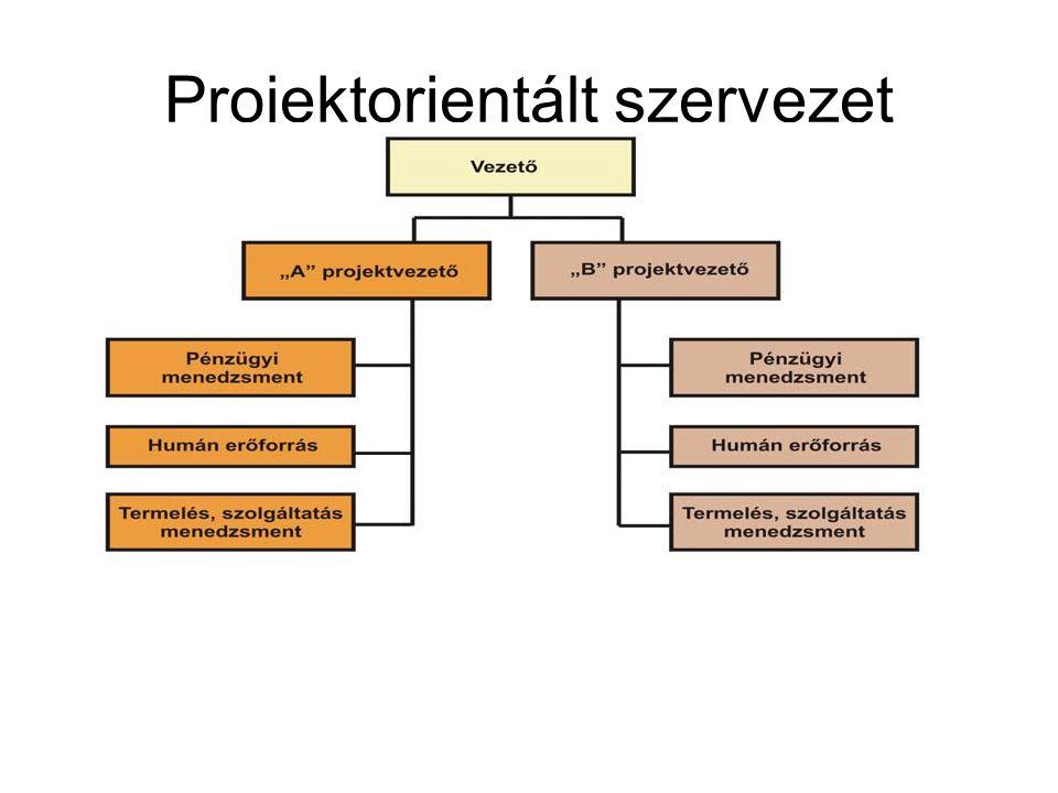 Projektorientált szervezet