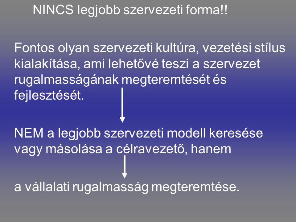 NINCS legjobb szervezeti forma!!