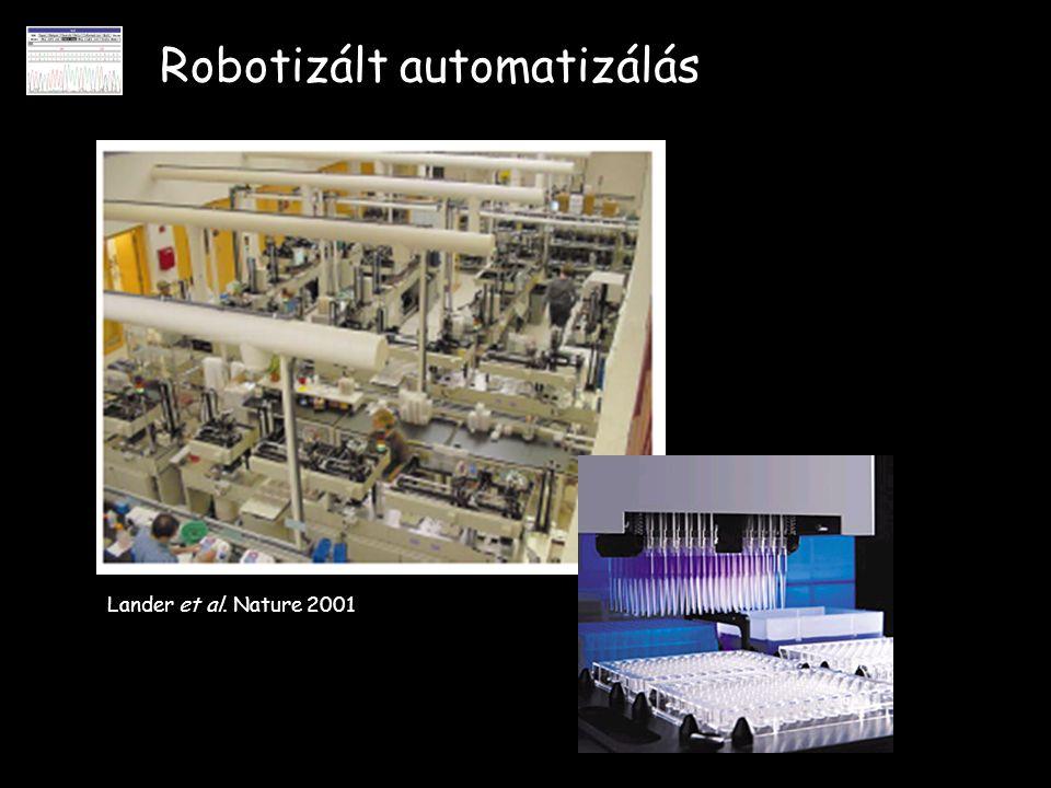 Robotizált automatizálás