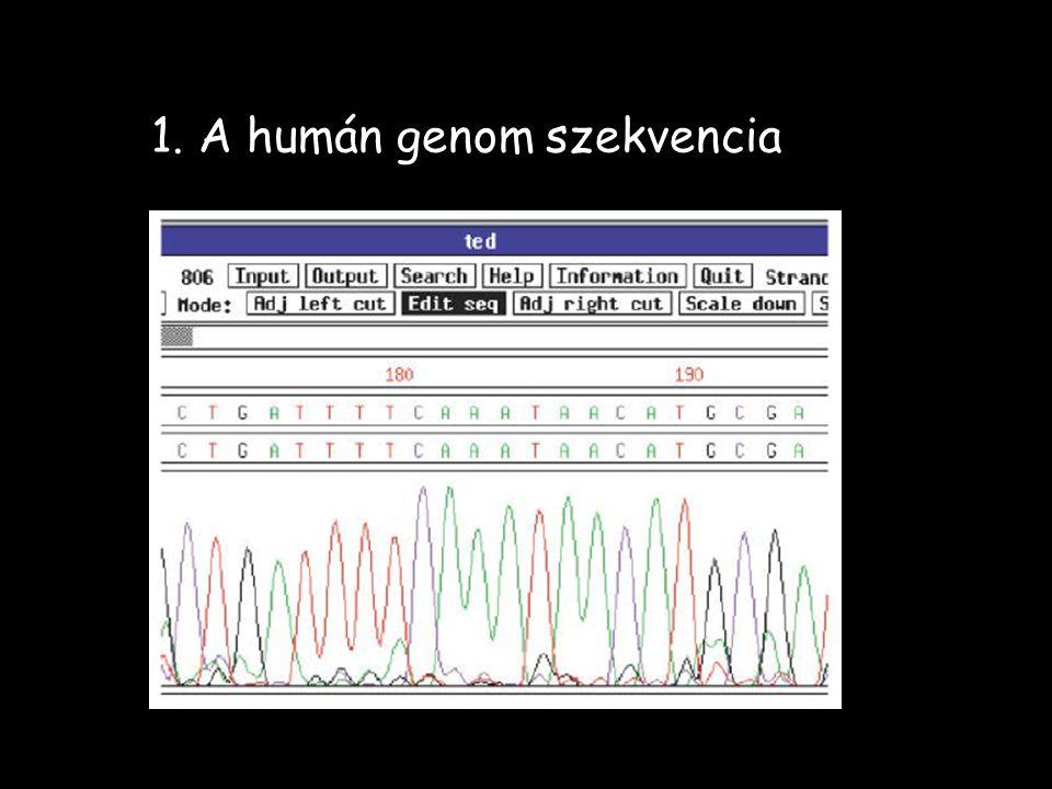 1. A humán genom szekvencia