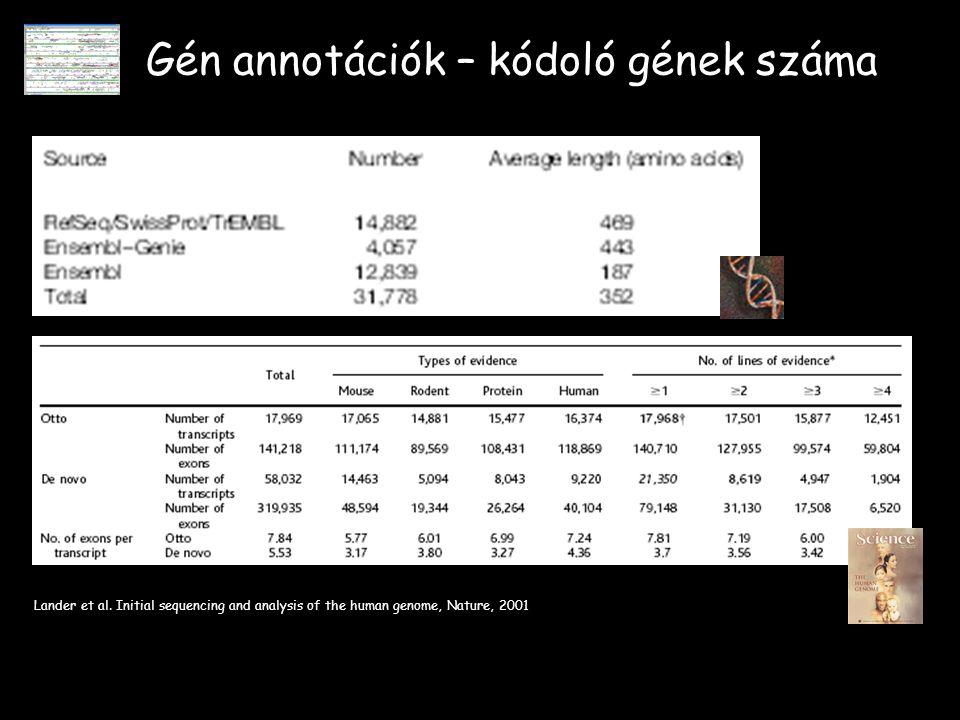 Gén annotációk – kódoló gének száma