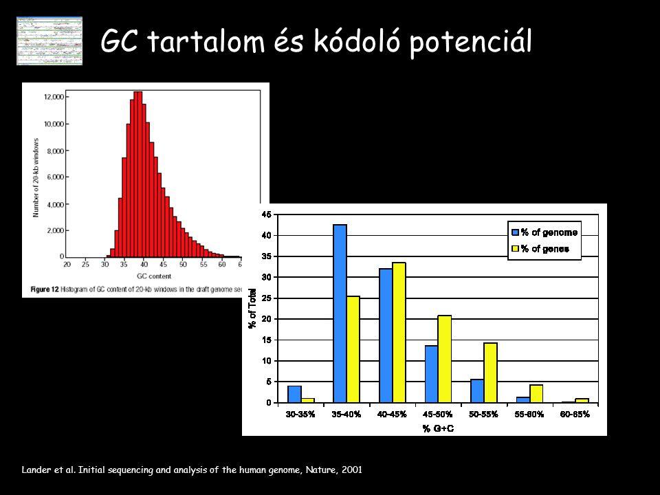 GC tartalom és kódoló potenciál