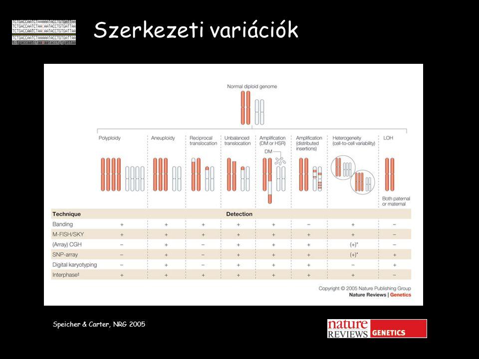 Szerkezeti variációk Speicher & Carter, NRG 2005