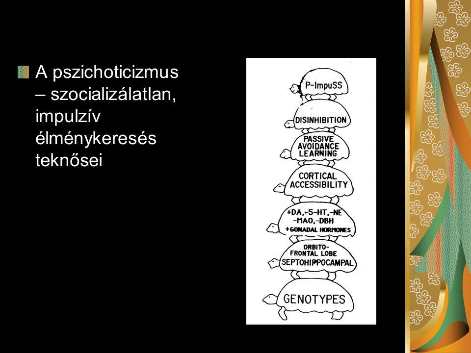 A pszichoticizmus – szocializálatlan, impulzív élménykeresés teknősei