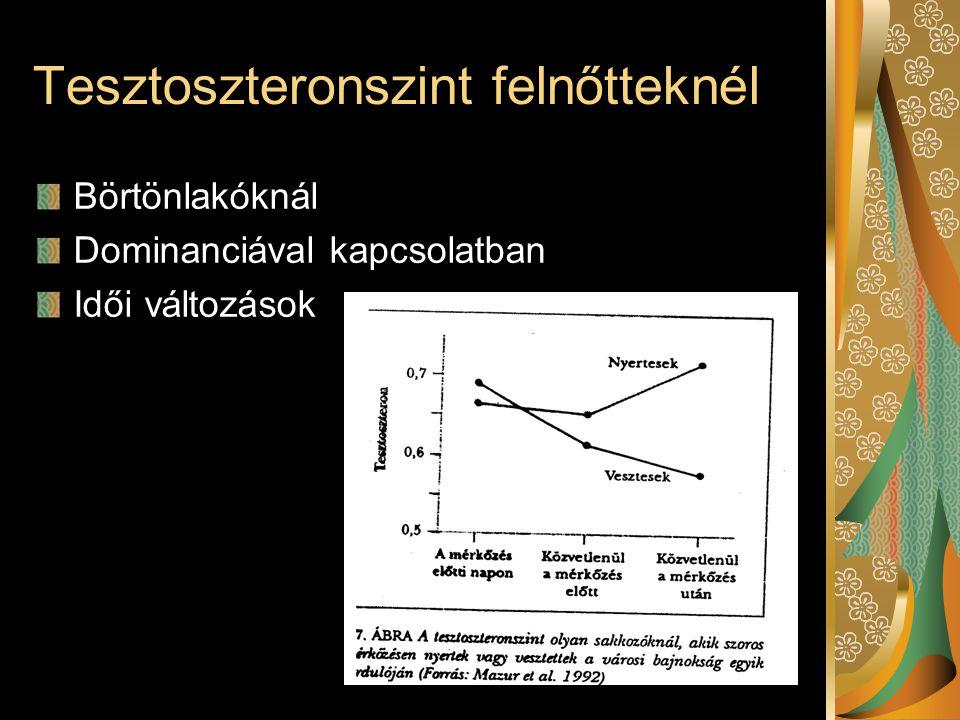 Tesztoszteronszint felnőtteknél