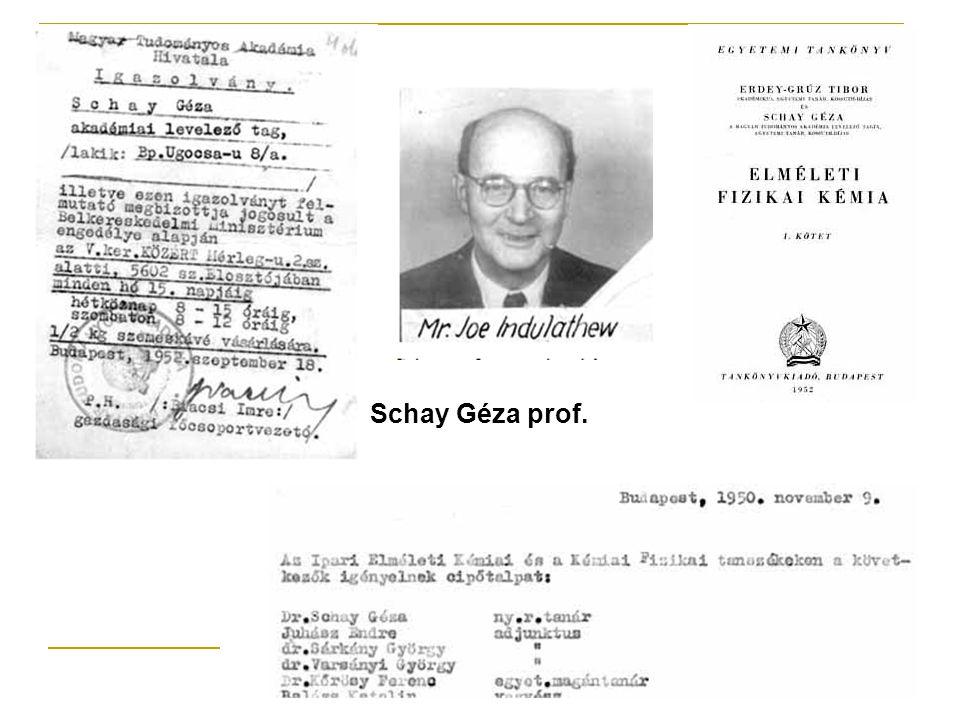 Schay Géza prof.