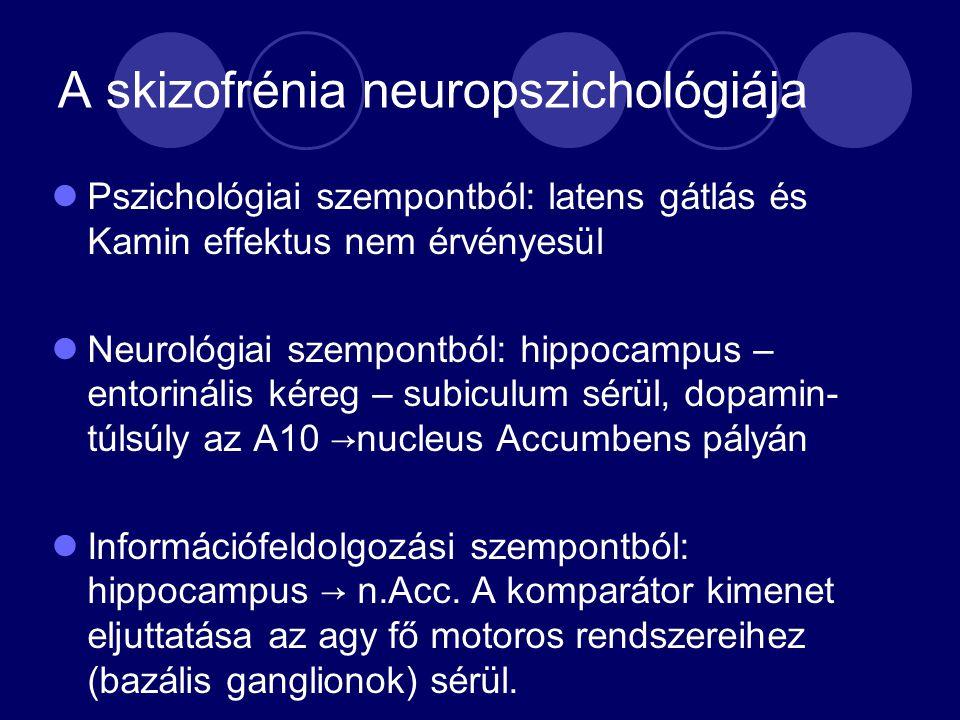 A skizofrénia neuropszichológiája