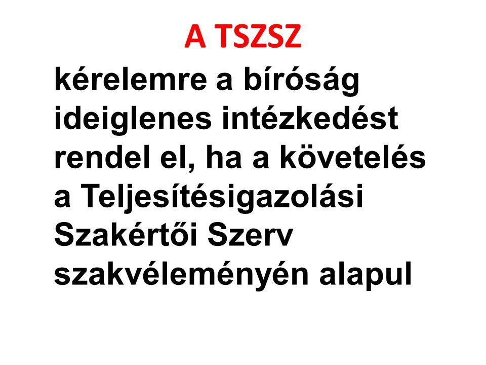 A TSZSZ kérelemre a bíróság ideiglenes intézkedést rendel el, ha a követelés a Teljesítésigazolási Szakértői Szerv szakvéleményén alapul.