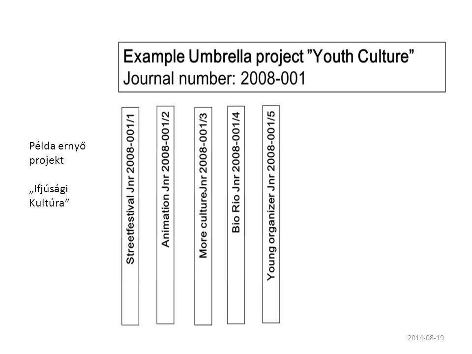 """Példa ernyő projekt """"Ifjúsági Kultúra"""