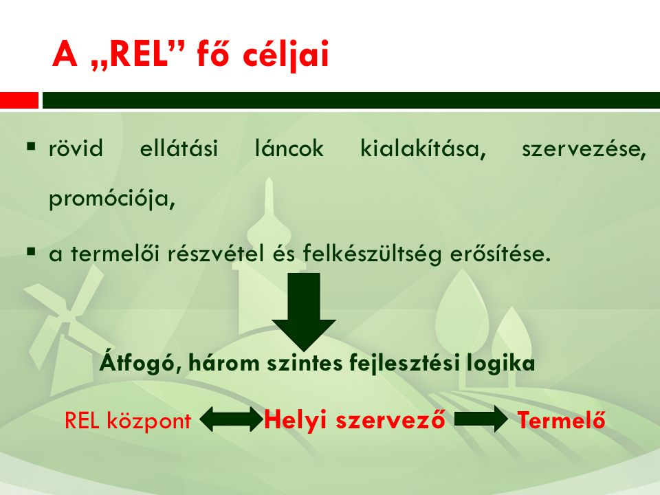 REL központ Helyi szervező Termelő