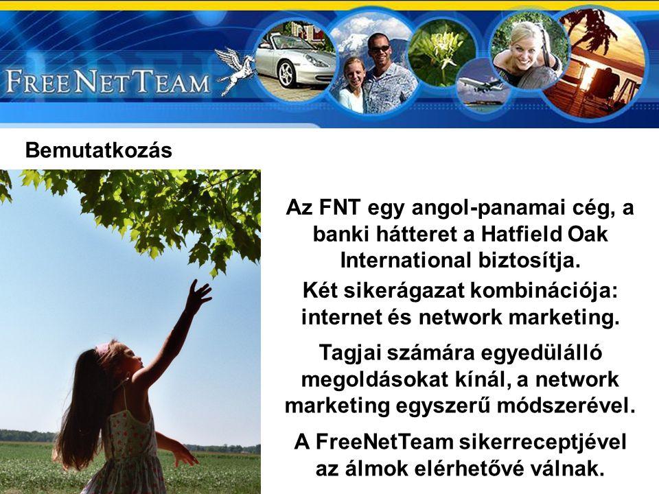 Két sikerágazat kombinációja: internet és network marketing.