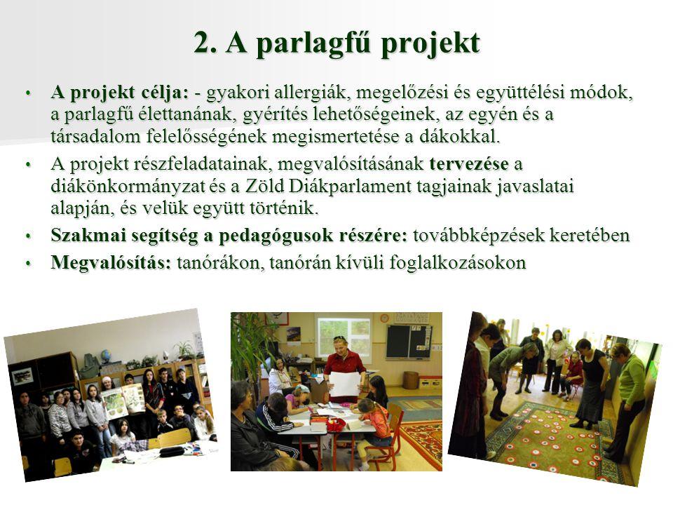 2. A parlagfű projekt