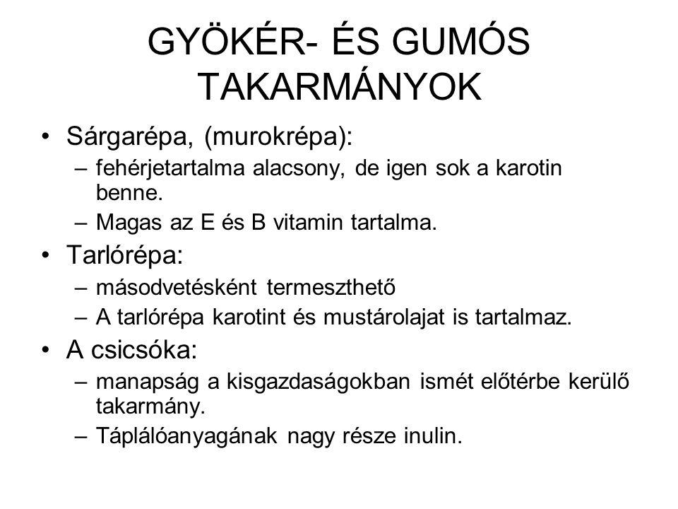 GYÖKÉR- ÉS GUMÓS TAKARMÁNYOK