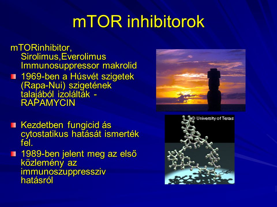mTOR inhibitorok mTORinhibitor, Sirolimus,Everolimus Immunosuppressor makrolid.