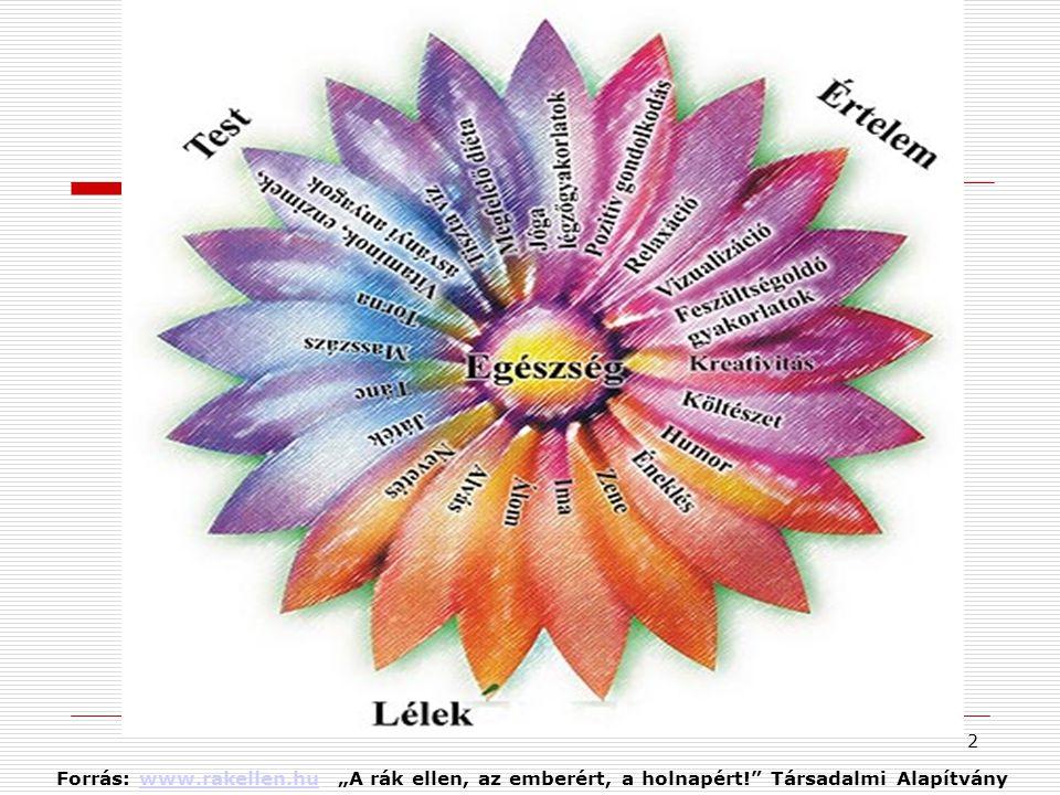 """Forrás: www. rakellen. hu """"A rák ellen, az emberért, a holnapért"""