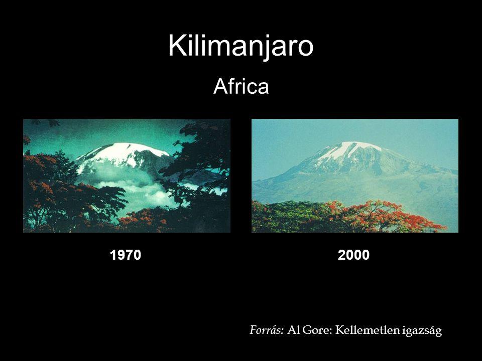 Kilimanjaro Africa 1970 2000 Forrás: Al Gore: Kellemetlen igazság