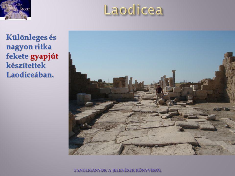 Különleges és nagyon ritka fekete gyapjút készítettek Laodiceában.