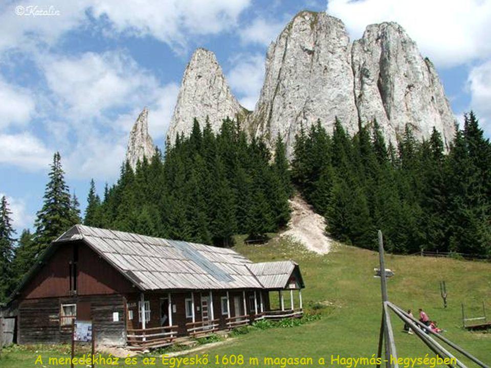 A menedékház és az Egyeskő 1608 m magasan a Hagymás-hegységben