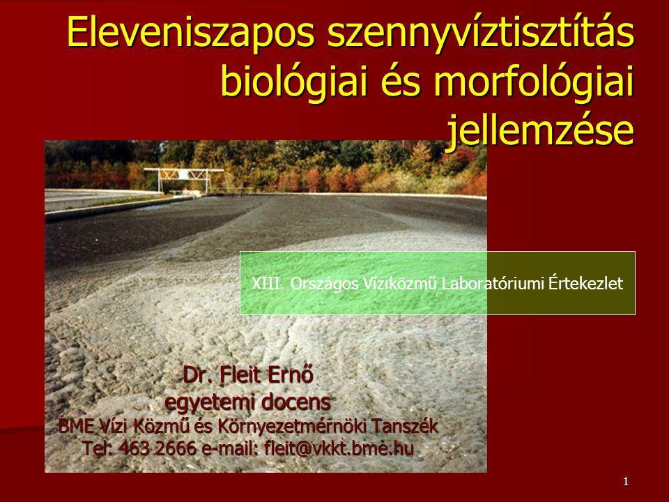 Eleveniszapos szennyvíztisztítás biológiai és morfológiai jellemzése