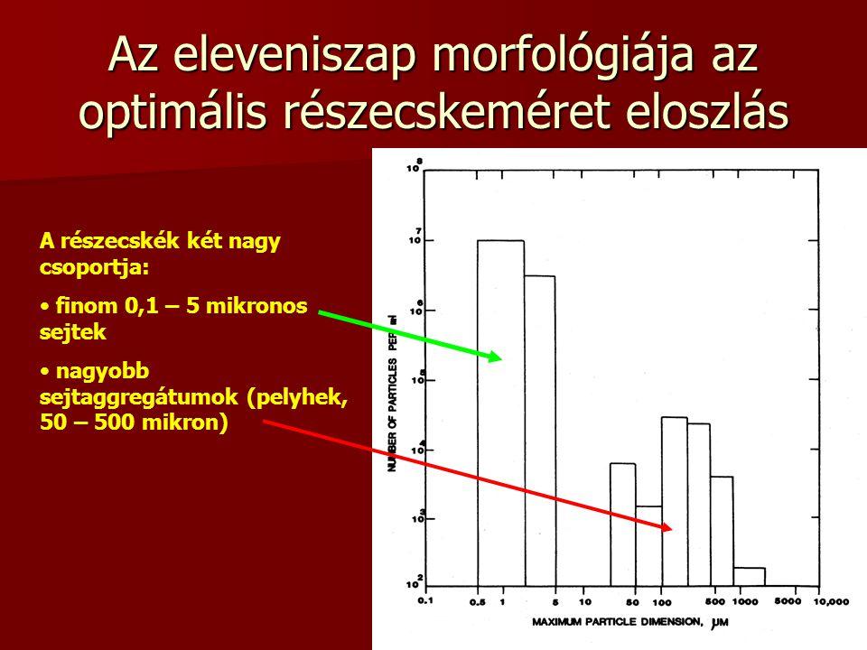 Az eleveniszap morfológiája az optimális részecskeméret eloszlás