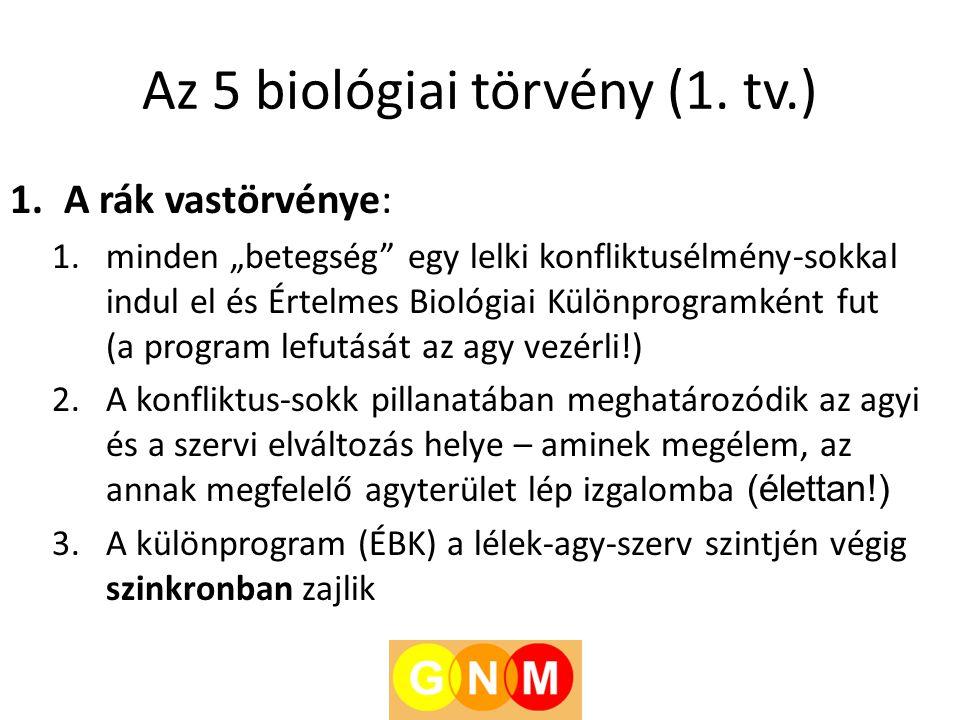 Az 5 biológiai törvény (1. tv.)