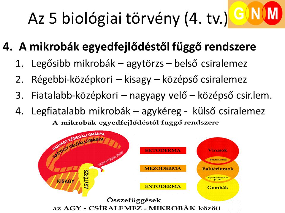 Az 5 biológiai törvény (4. tv.)