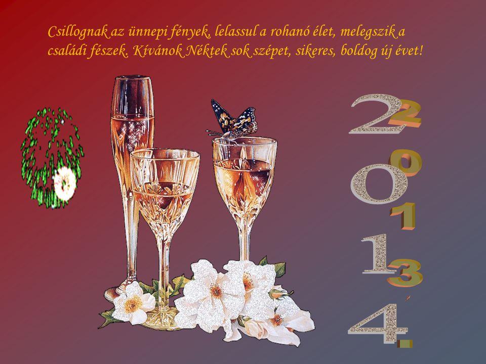 Csillognak az ünnepi fények, lelassul a rohanó élet, melegszik a családi fészek. Kívánok Néktek sok szépet, sikeres, boldog új évet!