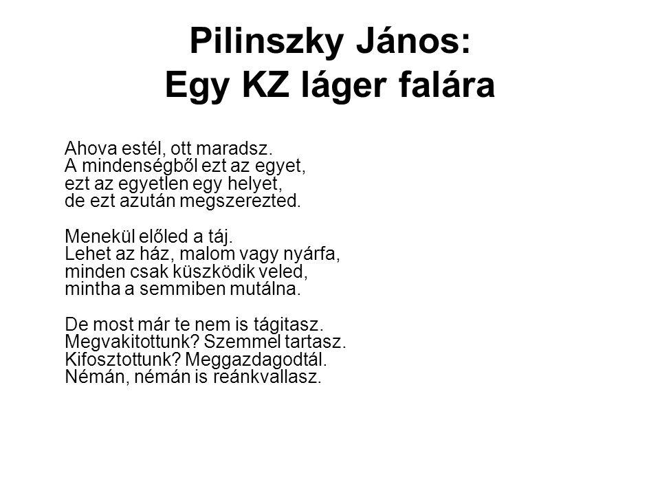 Pilinszky János: Egy KZ láger falára
