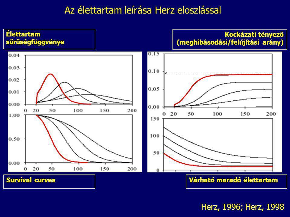 Az élettartam leírása Herz eloszlással