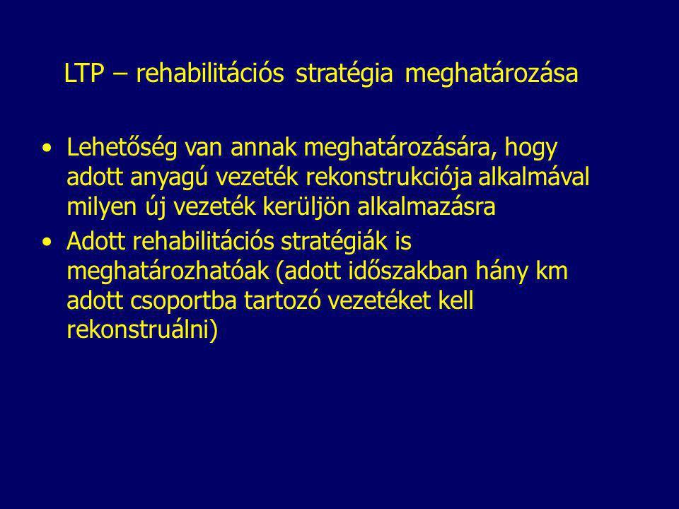 LTP – rehabilitációs stratégia meghatározása